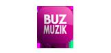 buz-muzik